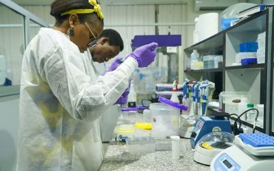 WHO selects Nigeria for world's deadliest diseases research